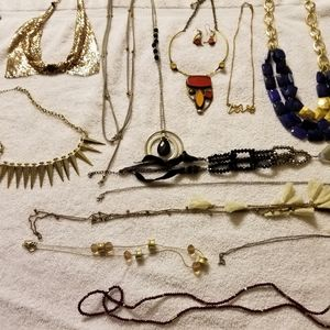 Bundle up 14 Necklaces and 1 Earrings